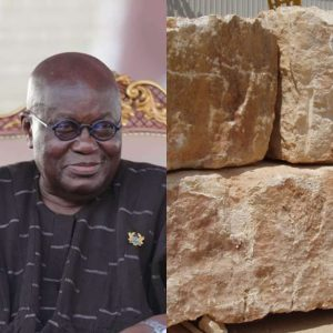 Akufo-Addo and his government