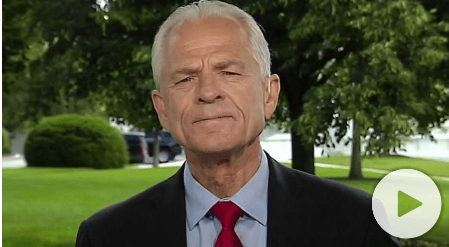 "White House trade adviser Peter Navarro tore into Dr. Anthony Fauci in a stunning op-ed on Wednesday, saying the National Institute of Allergy and Infectious Diseases director, who has been a leading voice on the Coronavirus Task Force, has been ""wrong about everything."""