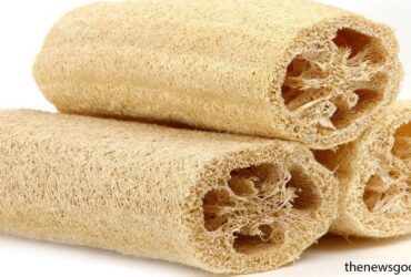 Reasons why you should stop using Loofah in the shower