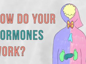 8 Fascinating Facts About Hormones and Their Functions