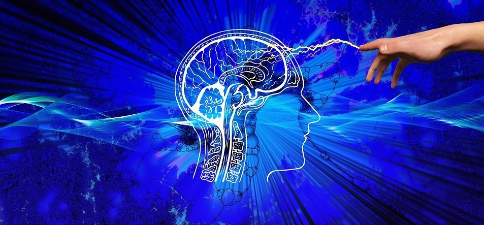 How Can I Improve My Neuroplasticity and Become Smarter?