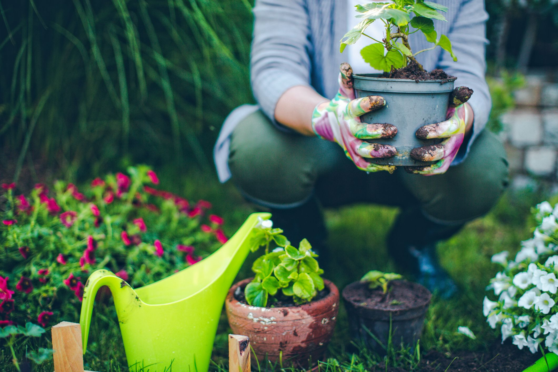 4 Edging Solutions That Will Make Your Garden Stand Out This Spring