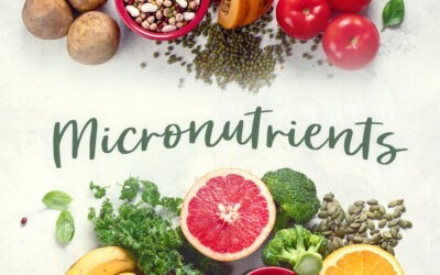 Why Are Mirco-Nutrients Important for Our Body?