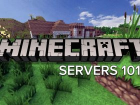 Everything About the Wonderful World of Minecraft and Mineplex