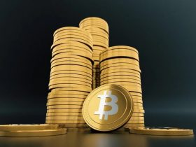 Bitcoin Price Gets Back to $50 000