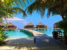 Discover the best of Maldives with Thrillophilia: Maldives Tours at Whopping 50% Off