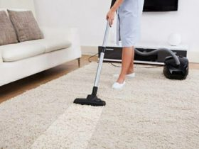 The Best Season to Do Carpet Cleaning? Carpet Bright UK